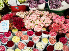 evening flower market (5)