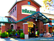 FNTWK-Whole-Foods-West-Vancouver-1