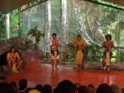 Kuranda_Rainforest (4)