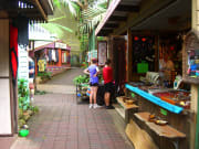 kuranda village shops