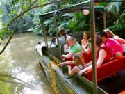 Full_Day_Kuranda_Rainforest (2)