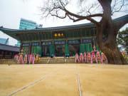 korea_seoul_Jogyesa-Temple-in-Seoul-,-South-Korea_shutterstock_186894740