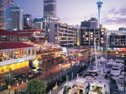 Auckland_Afternoon_City (1)
