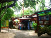 green island souvenir shops