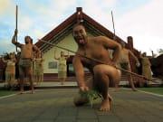 Auckland to Rotorua Maori Cultural Performance