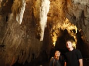 Waitomo Glowworm Caves Tour from Auckland