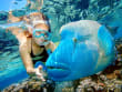 great barrier reef sharm el sheikh napoleon fish