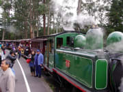 Melbourne_Puffing_Billy_Train_Ride (1)