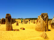Pinnacles_Desert (9)