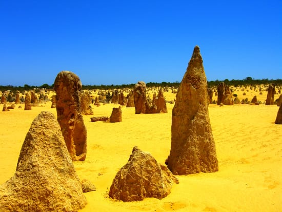 Pinnacles Desert and Lancelin Sand Dunes 4WD Adventure from