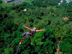bungy jump in cairns