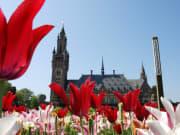 Netherlands, Holland, Peace Palace, The Hague