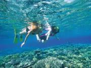 great barrier reef two women snorkeling corals