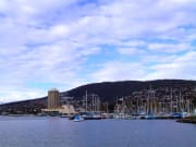Explore Hobart City on this deluxe day tour