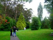 Hobart_City (4)