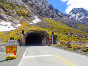Homer tunnel Milford Sound Cruise from Queenstown