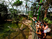 cairns-zoom-and-wildlife-dome (27)