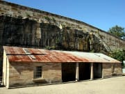 goat island convict history tour sydney harbour