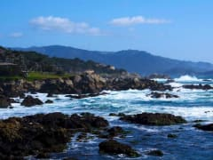 USA_San Francisco_Gray Line_Monterey Excursion