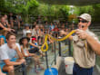 Snake Show hartley's zoo australia full day tour