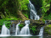 Lamington National Park_361287182