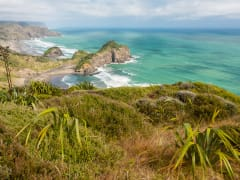 Waitakere Ranges coastline