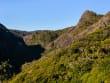 Waitakere Ranges Auckland Tour