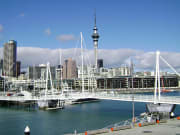 Auckland City Tour Best of Both Worlds Harbor