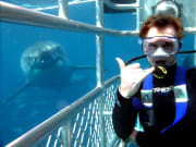 white shark cage diving (21)