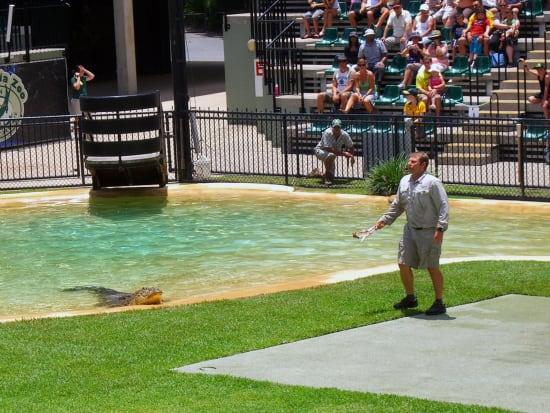Australia Zoo Wildlife Warriors Show