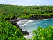 Hawaii_Maui_Hana_Holo Holo Maui_Guava Bite