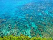 Hawaii_West Maui_Holo Holo Maui