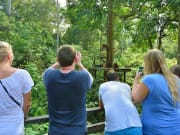 Sandakan_Turtle_Island_and_Orangutan_Sanctuary (6)