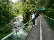 kinabalu national park nature trails