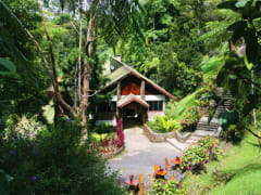 Kinabalu_National_Park_and_Poring_Hot_Springs (3)