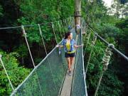 canopy walk kinabalu national park