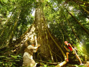 Gaya_Island_Jungle_Trek_and_Island_Hopping (3)