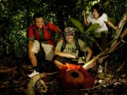 giant rafflesia gunung gading park malaysia
