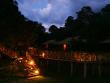 Danum_Valley_Rainforest (8)