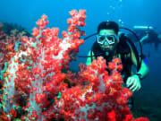 satang_island (6)