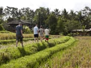 Rural_Charms_of_Bali (3)