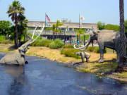 usa_california_los angeles-zoo