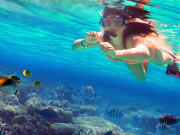 woman snorkeling under the sea, colorful fish