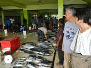 魚市場で食材の調達