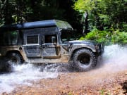 Cairns Rainforest by H1 Military Hummer (1)