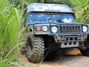 Cairns Rainforest by H1 Military Hummer (8)