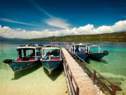 Menjangan Island_121249129