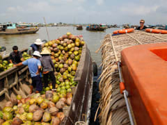 Mekong Delta Full Day Tour by Speedboat from Ho Chi Minh Pier, Ho Chi Minh tours & activities, fun things to do in Ho Chi Minh | VELTRA