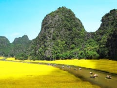 Tam Coc rice fields boat ride ninh binh day tour