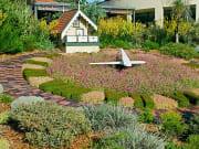 Kings Park and Botanic Garden, Perth